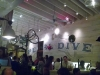 Pearl Dive Oyster Palace with David Burton & Chris Colglazier - Washington, D.C.