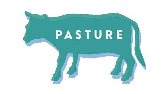 Pasture - Richmond, Virginia